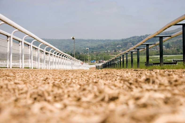 INSURANCE LIABILITY RISK ASSESSMENT -  East Coast U.S. Casino and Race Track Facility